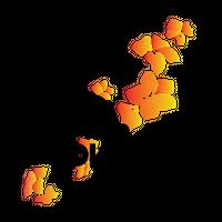 Okinawa Tourism