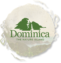 Discover Dominica Authority