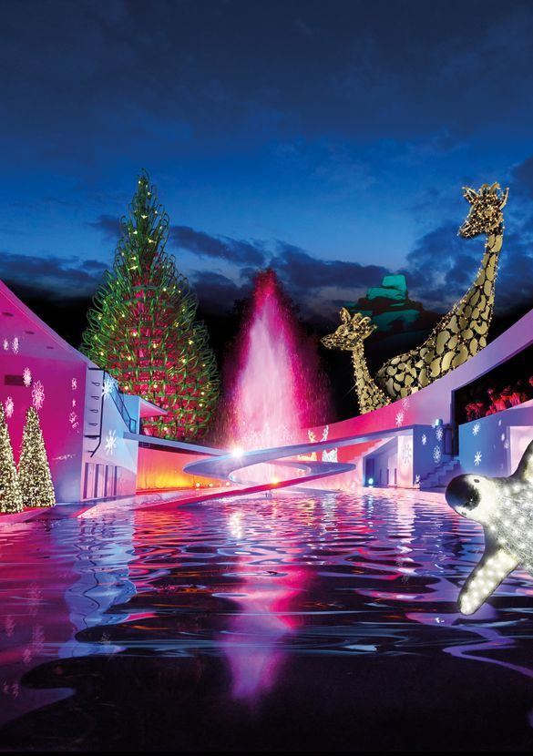 Christmas at London Zoo New for 2018