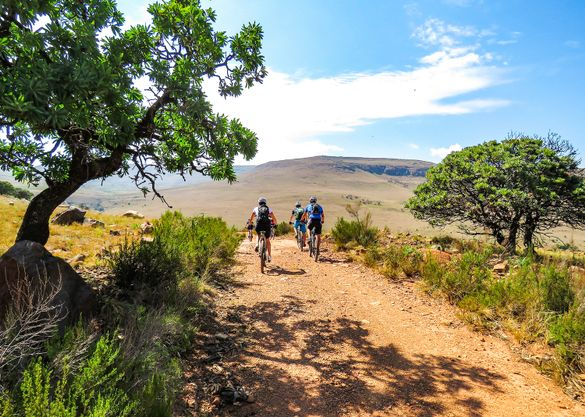 Ride South Africa and Botswana's famous game and nature reserves with Saddle Skedaddle