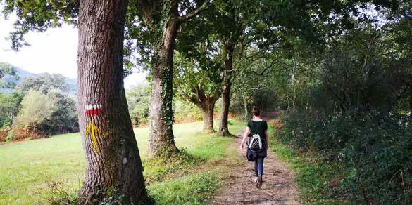 Walker on the Camino del Norte route, Basque Country