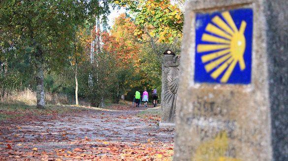Pilgrims on the Camino de Santiago, Autumn