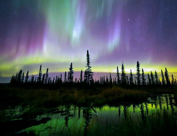 The Aurora Borealis over a lake near Fairbanks, Alaska.