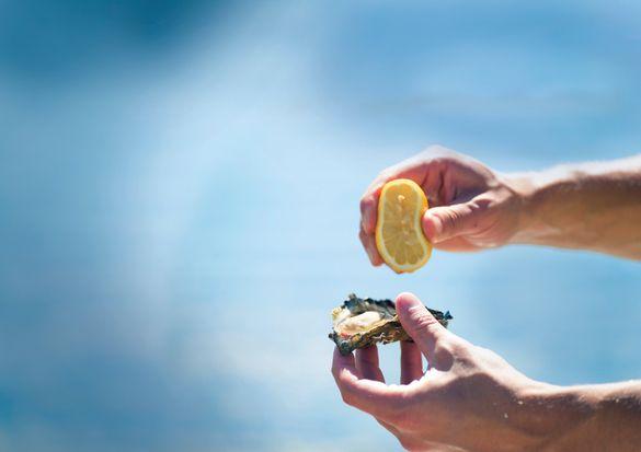 Fresh Oysters, Port Stephens