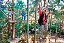Go Ape Tree Top Adventures