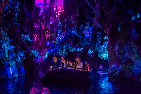 One of several major openings in Orlando this summer, Pandora - The World of Avatar at Disney's Animal Kingdom will bring a variety of new experiences to the park, including a family-friendly attraction called Na'vi River Journey, pictured here.