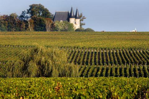 Chateau Pichon-Logueville