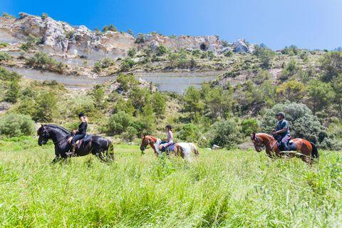 Cami de Cavals trail, Menorca