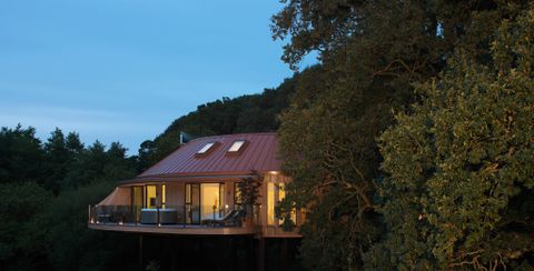 Chewton Glen Debuts New Treehouse