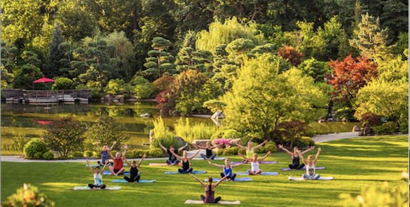 Yoga at Anderson Japanese Gardens