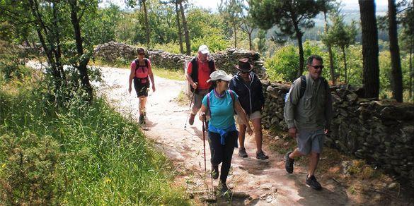group on the Camino de Santiago