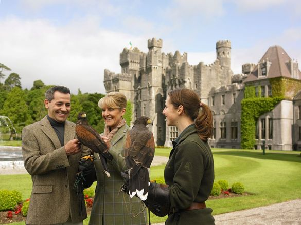 Admiring the falcons at Ashford Castle in County Mayo, Ireland