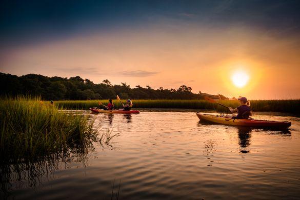 Eco-kayaking sunrise tour in Little River, SC