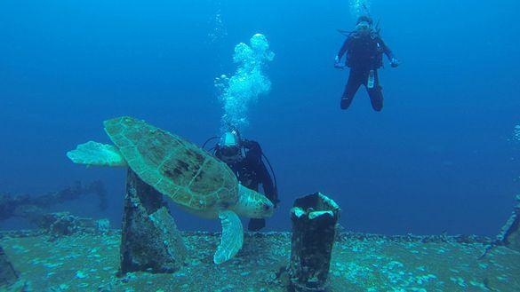 Dive SCUBA, Pensacola