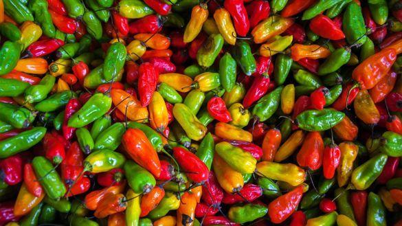Latin America food colours
