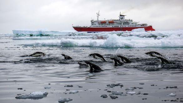 G Expedition Antarctica